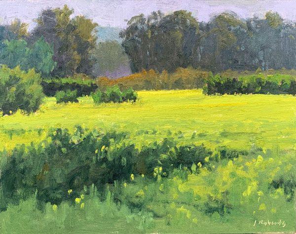 """Mustard in Ojai, 11""""x14"""", oil on panel"""